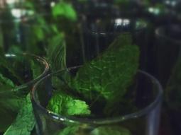Holy mint-moly! #breakthrubeverage #brandyrumjulep #oldfloridacocktaildinner @nnistico