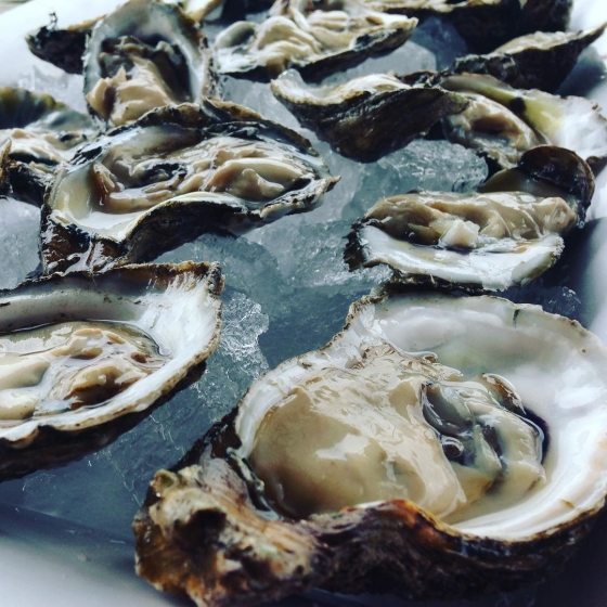Make your Monday a good one and have oysters with us! Your first dozen raw oysters are only 25 cents each at Atlas tonight!