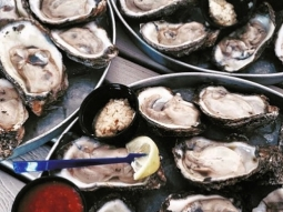 It's Monday, you know what that means- OYSTER NIGHT at Atlas! Come get your first dozen raw oysters for only 25 cents each!