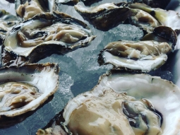 Come see us at Atlas for Oyster Night! Your first dozen oysters for only 25 cents each!