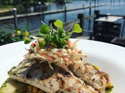 Let's have lunch! Today's special: Grilled amberjack over a sauté of asparagus, corn, and Brussels sprouts. Finished with a basil-honey vinaigrette and house slaw