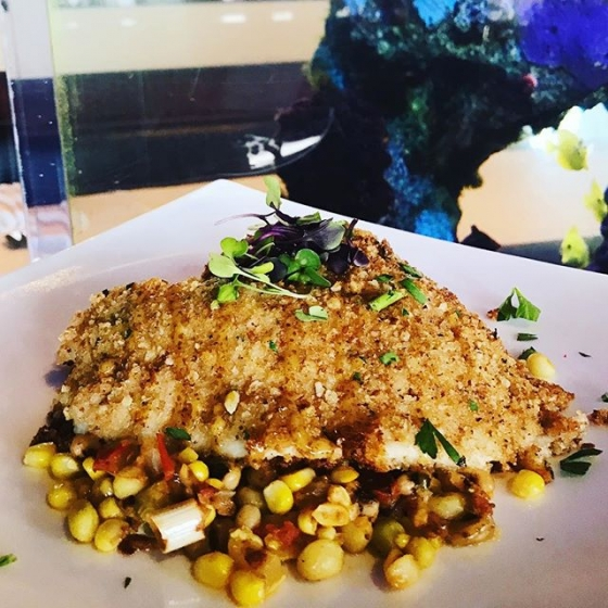 Escape the rain with lunch at our house! Today's special: Pecan crusted flounder over summer succotash, finished with cane syrup-creole vinaigrette